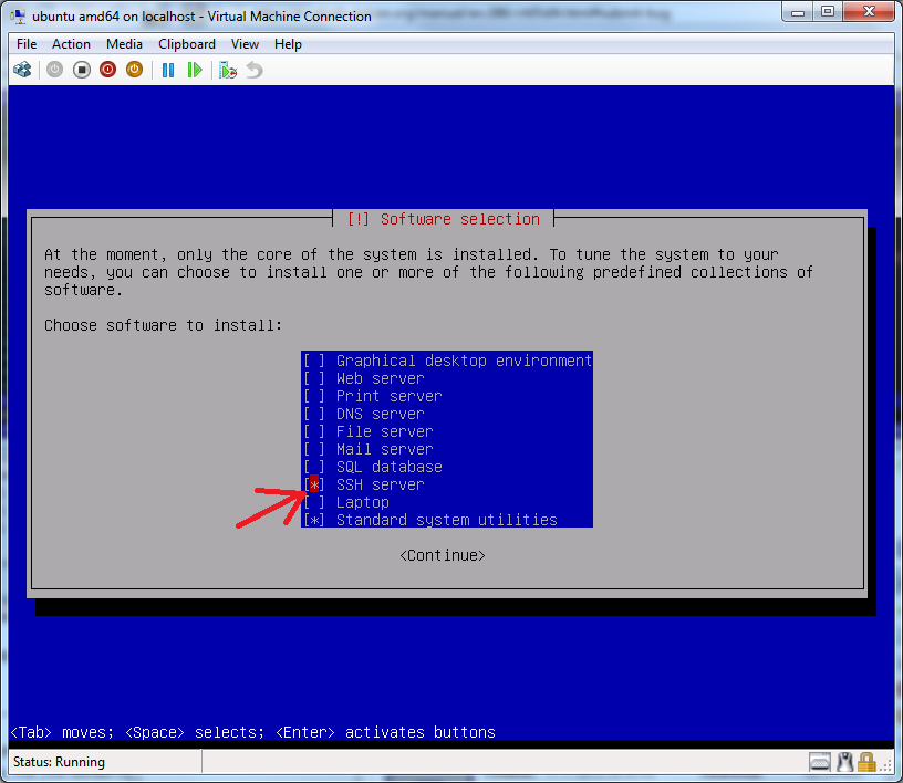 Debian 6 has option for SSH server installation right from installer